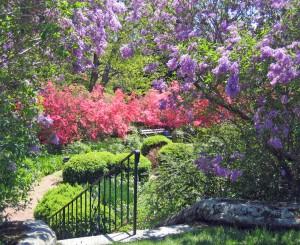 MF Gardens.0483